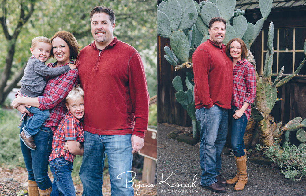 chicago family holiday photos with a green cactus