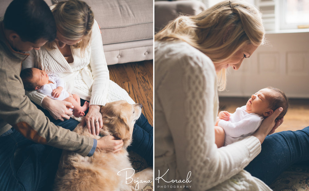 family with newborn baby and golden retriever