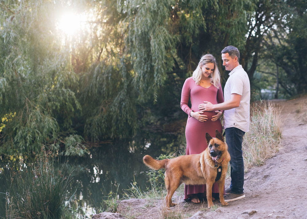 maternity-couple-with-their-dog-at-the-tilden-park.jpg