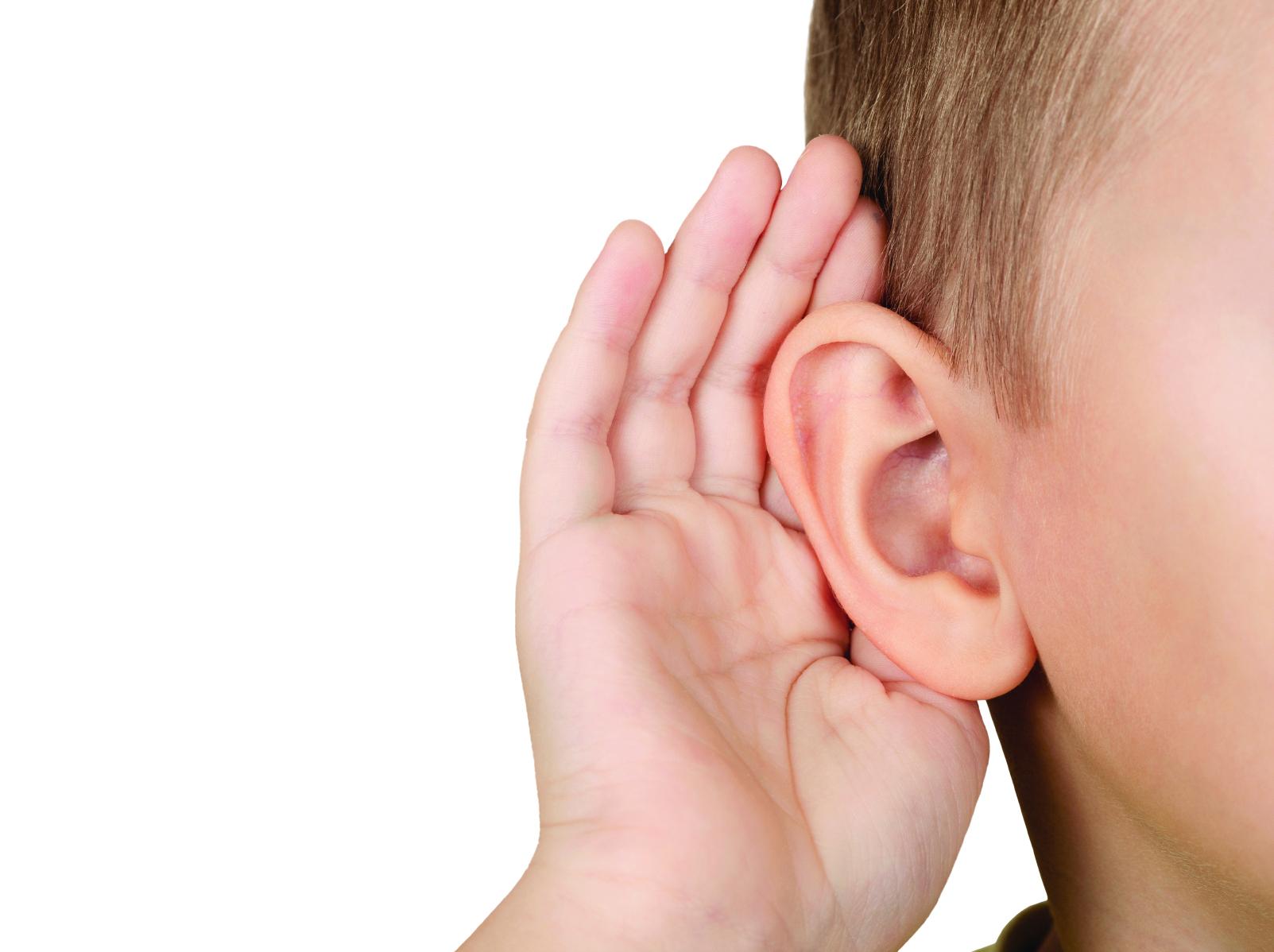 Listening Ears & Vocabulary —