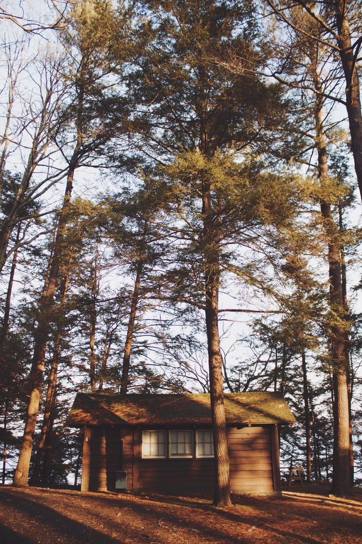 Cabin - Cayuga Lake.jpeg