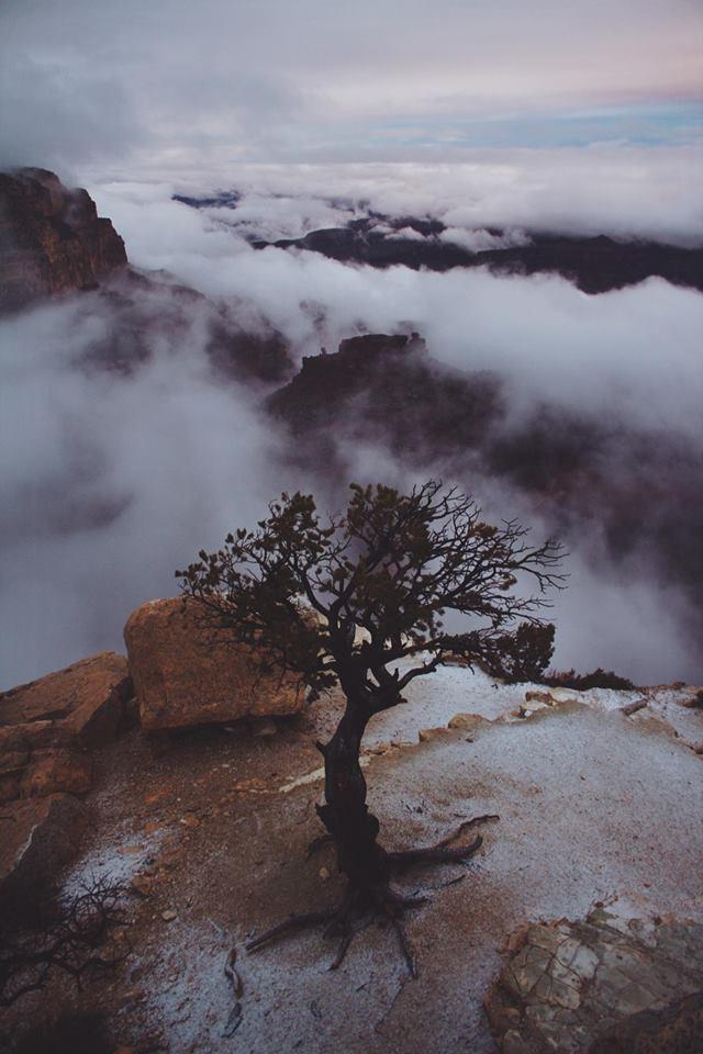 Grand Canyon - South Rim.jpg