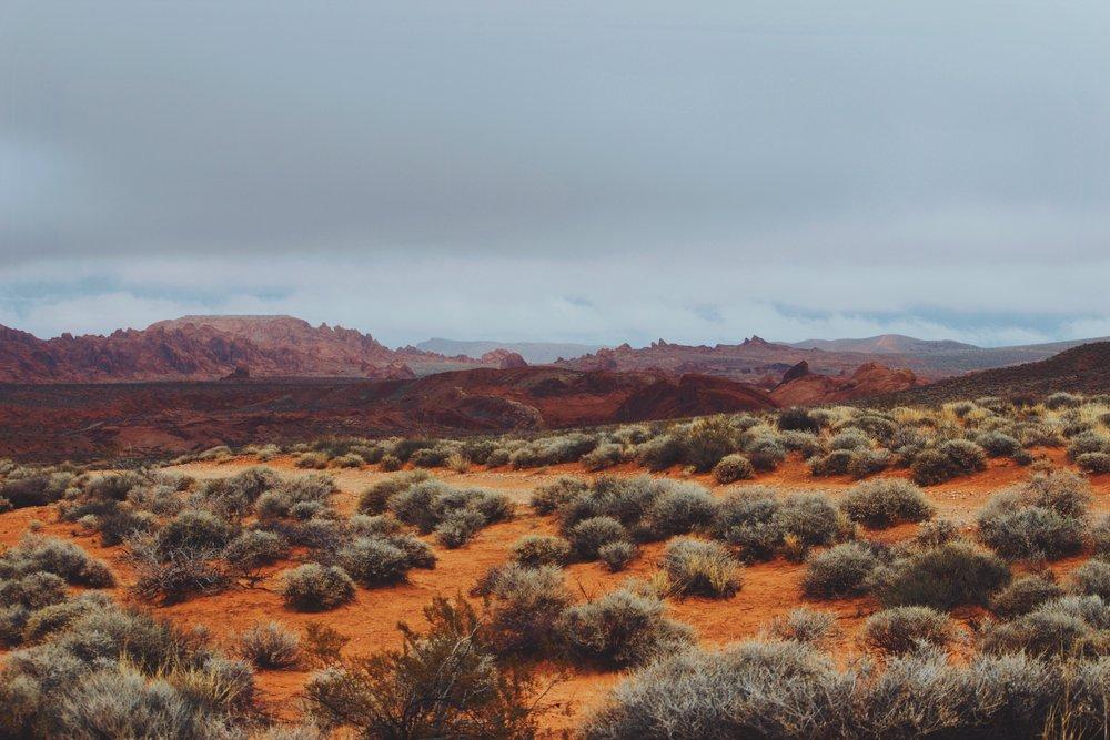 Sands Of Fire, Valley Of Fire, NV.jpg