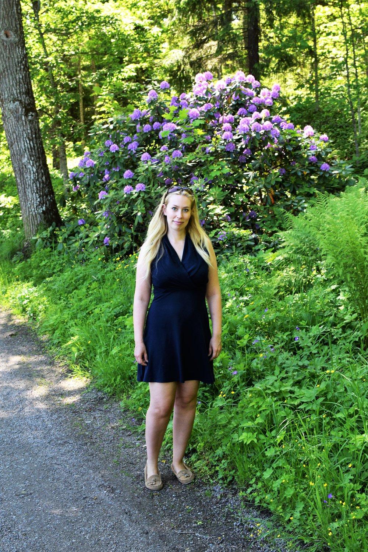 Alppiruusut kukkivat kauniisti rantareitin varrella