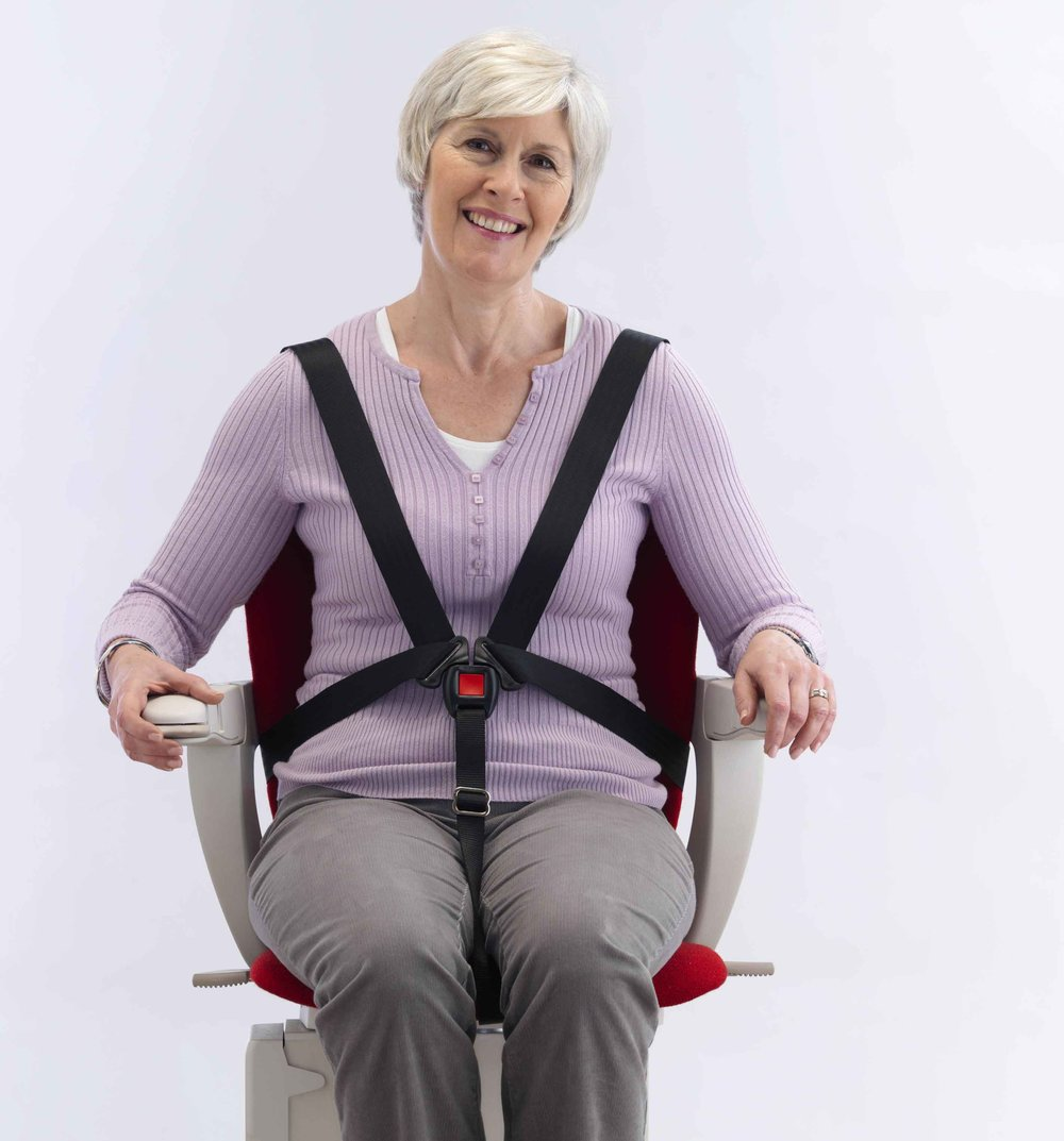 Starla-curved-five-point-harness.jpg