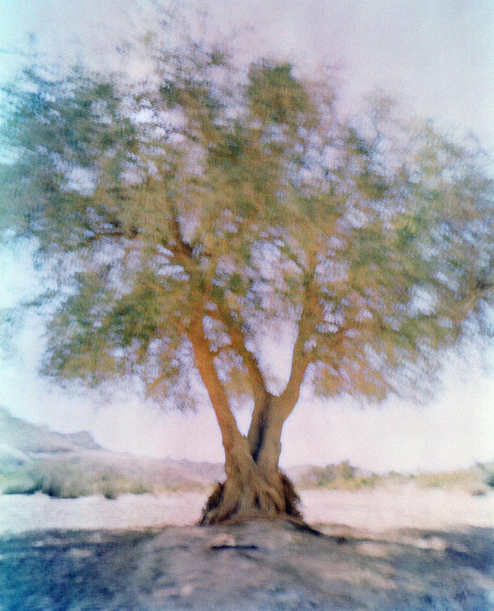 21438_MTU_Namibia_002-16.jpg