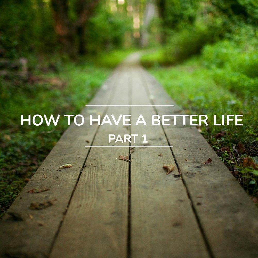 Better Life (1).jpg