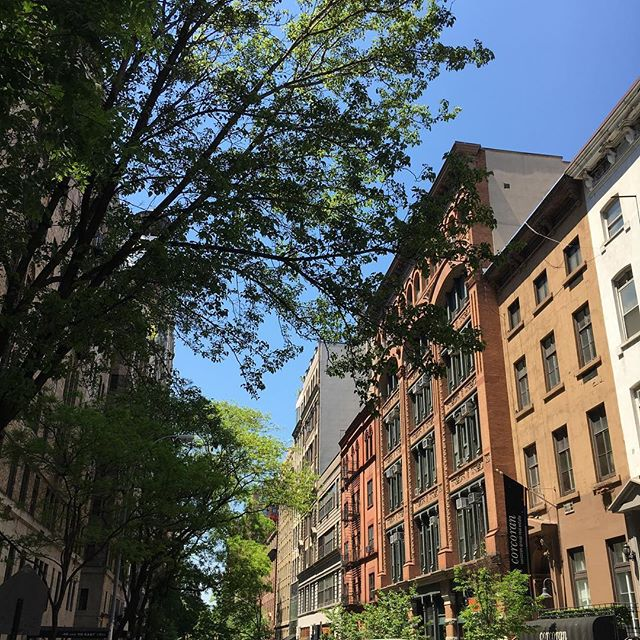 Today is just perfect! #nyc can just surprise you like that ☺️😎👊🍀🌻🌷🗽#sunshine #freedom #walking #living #joy #music #outdoors #urbannature #smile #nofilter