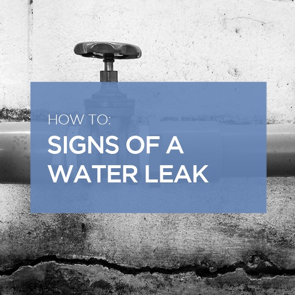 signs of a water leak