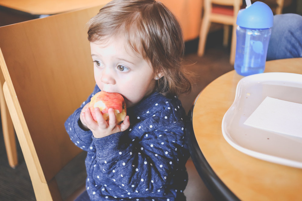 Toddler girl eating an apple at Panera Bread in Staten Island, NY. Documentary family photography.