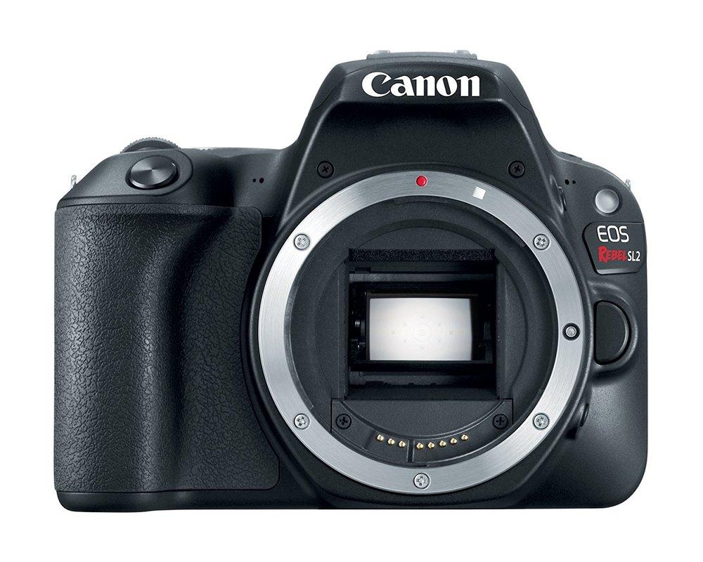 Beginner's DSLR Buying Guide - Canon EOS Rebel SL2