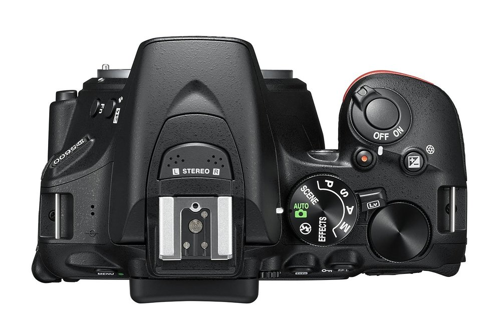 Nikon D5600 - 4.jpg