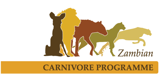 Zambian Carnivore Program
