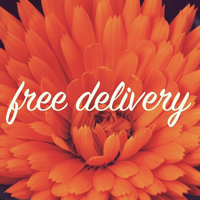 Get your favorite eco-friendly dry cleaning delivered straight to your home or office.  We've expanded our delivery service to the North Bay. We're now taking our FREE delivery to Sausalito, Corte Madera, and Mill Valley. Sign up today at https://www.sfgreenclean.com/ #drycleaning #reusablebag #ecofriendly #greenclean #sanfrancisco #sf #cortemadera #millvalley #sausalito #laundry #wetclean