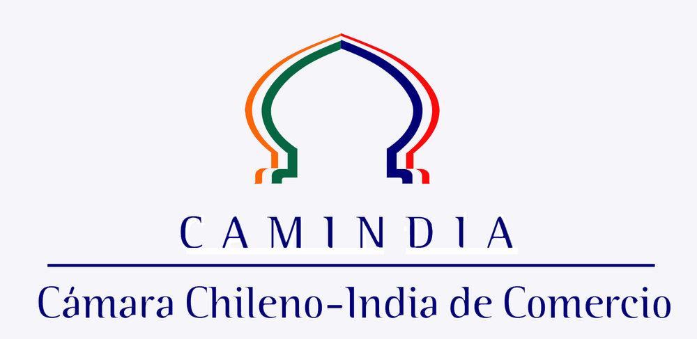Logo_camindia alta.jpg