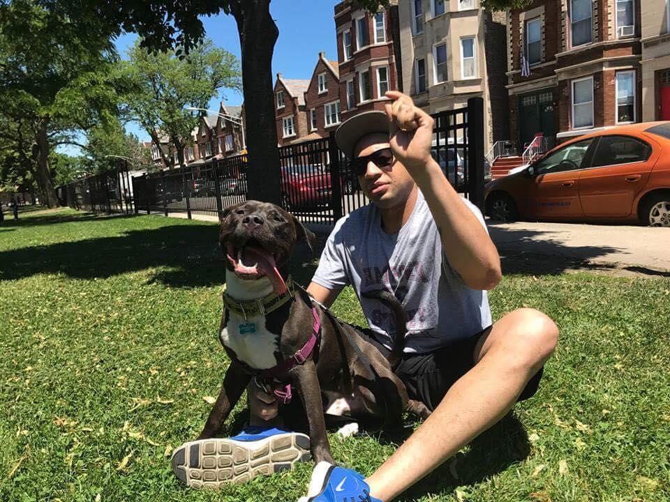 BECKHAM (fka Brock)- Adopted 2017