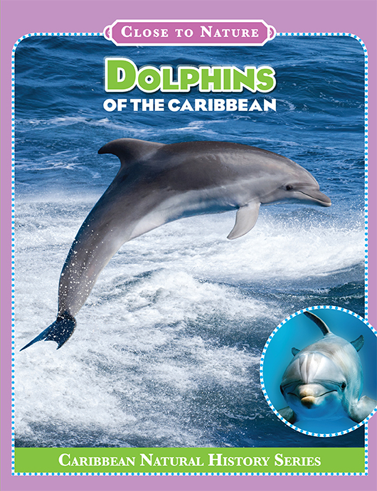 Dolphins_Cover.jpg