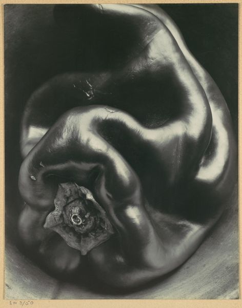 Edward Weston, Pepper No. 35 (1930)