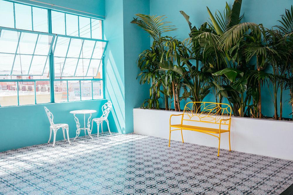 Palm Room.jpg