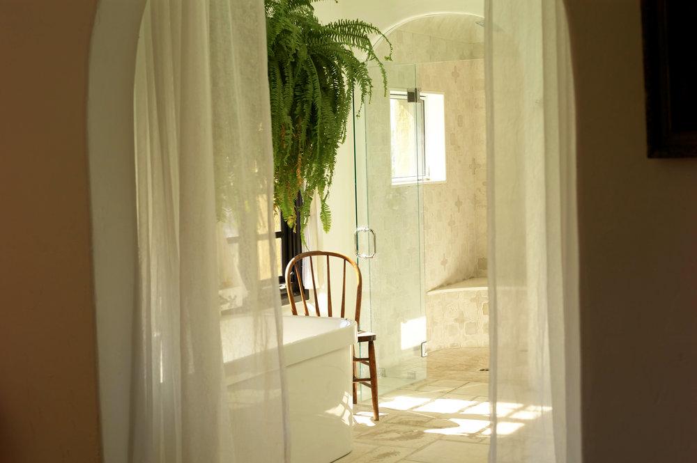 bathroomfern.jpg