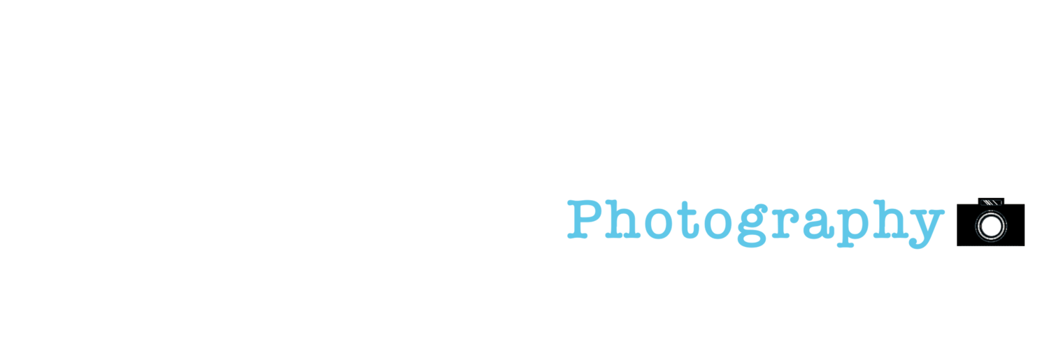 Twig's Branch Photography