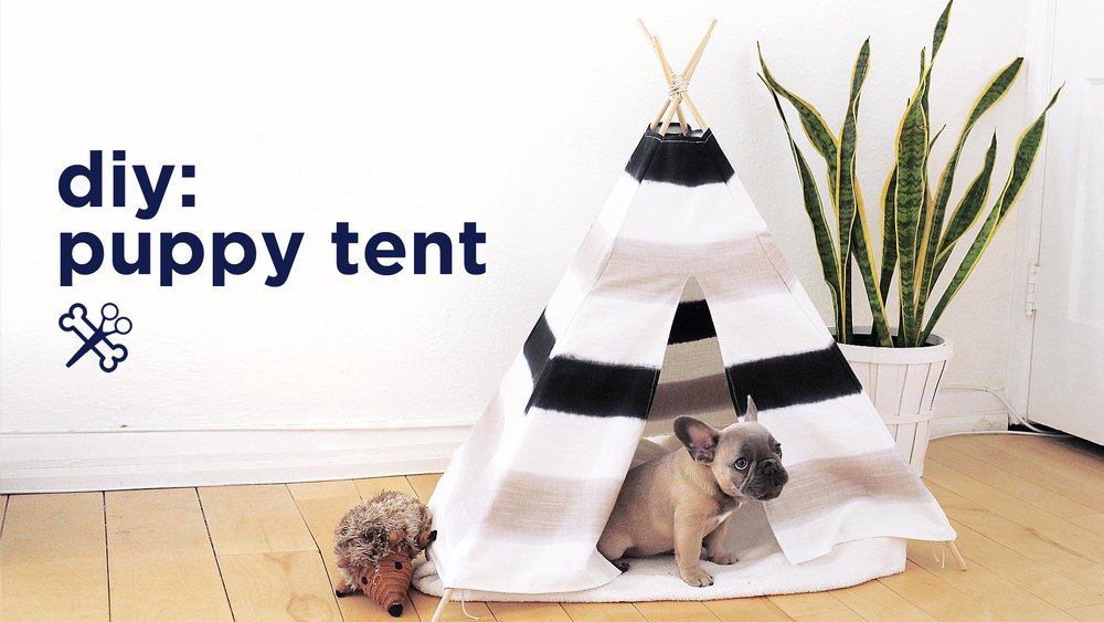 DIY PUPPY / PET TENT — The Sorry Girls