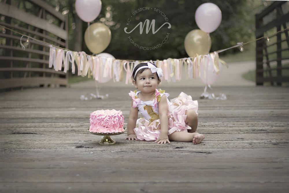 First birthday cake photograph