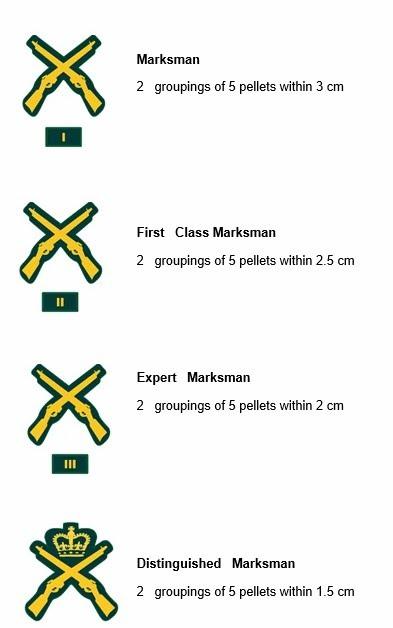 marksmanship Qualification Levels.jpg