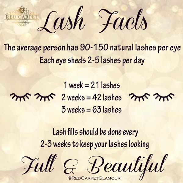 eyelash extension refill guidelines