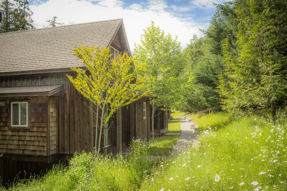 The Cottages-9346.jpg