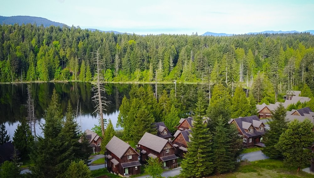 The Cottages Drone Overhead to Lake.jpg