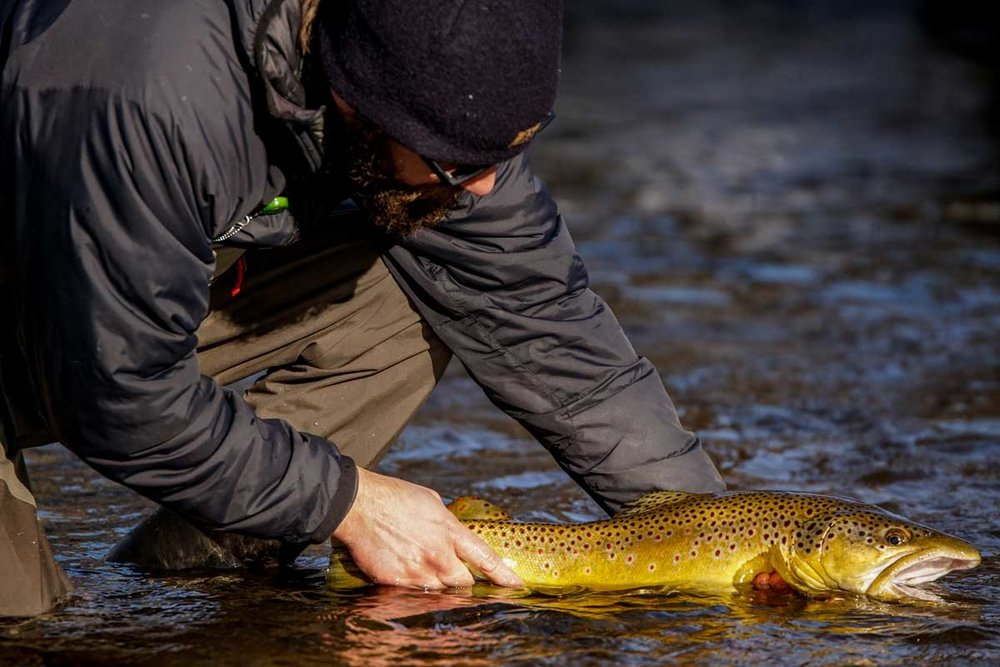 noontootla-creek-farms-winter-snow-fly-fishing-1