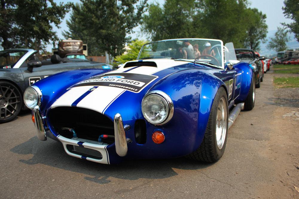 Cobra2 (1 of 1).jpg