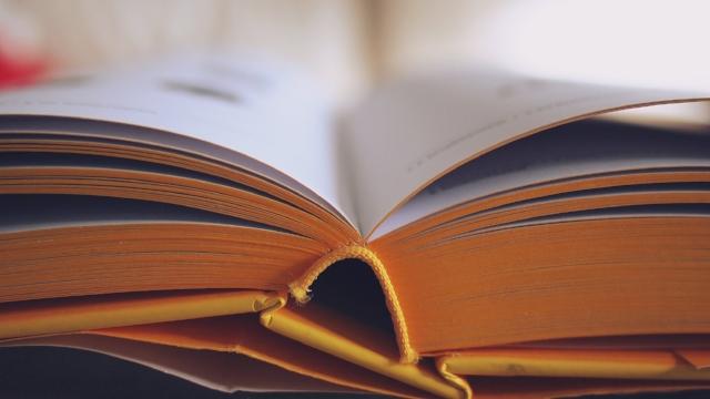 book-bookstore-close-up-261821.jpg