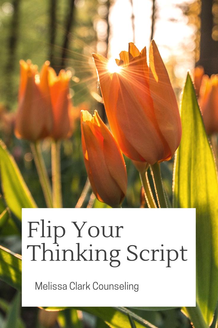 Flip Your Thinking Script