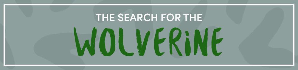 wolverine-homepage.jpg