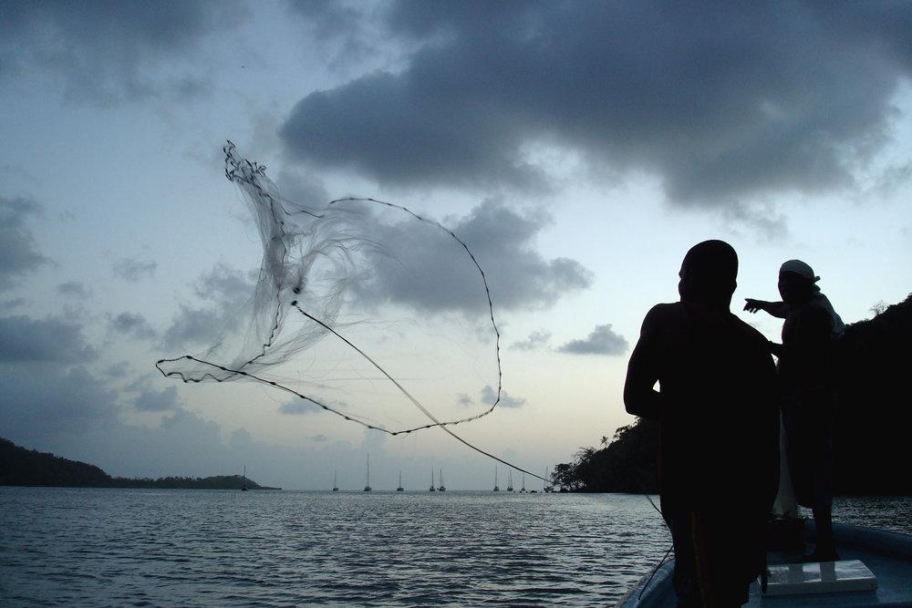 07. Sardines.jpg