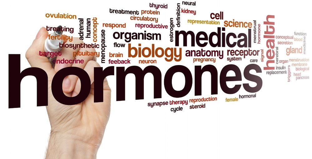 PROTECT BIO-IDENTICAL HORMONE REPLACEMENT.