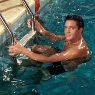 Elvis-Presley-image-elvis-presley-36257997-320-320.jpg