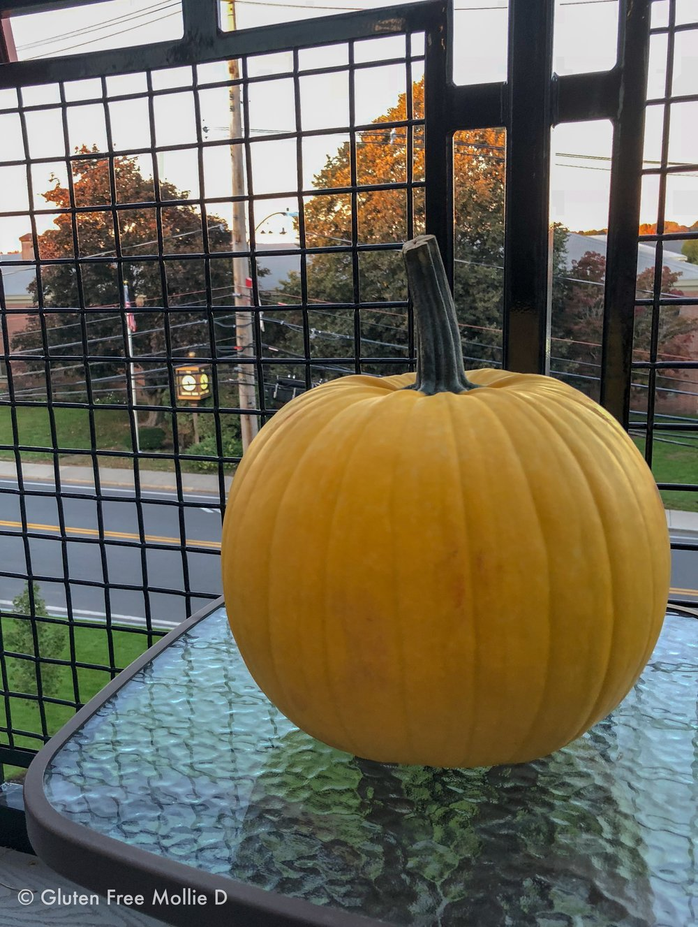 Our new, yellow pumpkin. :)