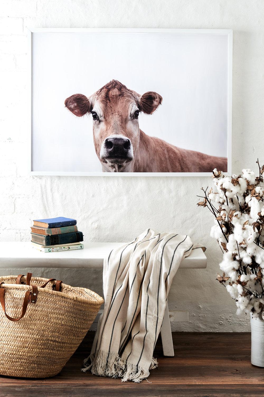 interior-decorating-entry-Liz-Hayward
