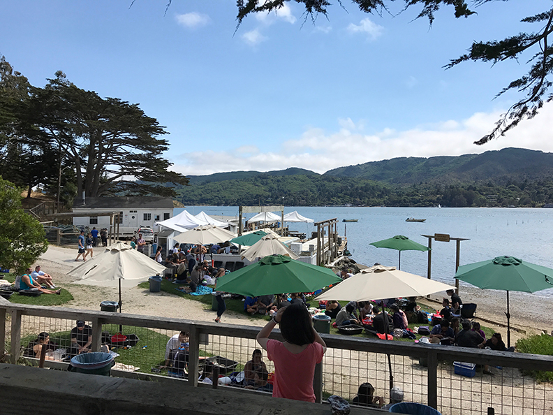 Tomales Bay Oyster Company