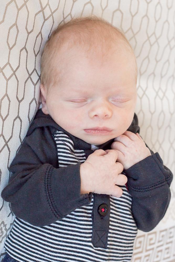 barrie newborn session