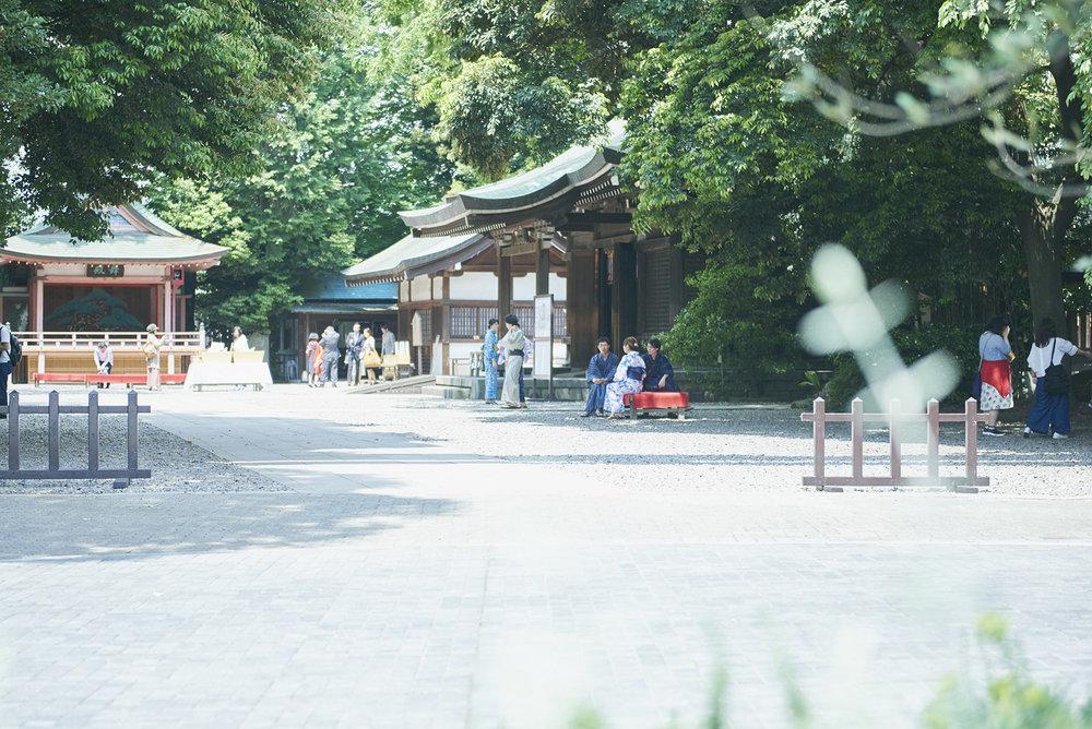 Kawagoe_HikawaJinjya_170713 (3) copy.jpg