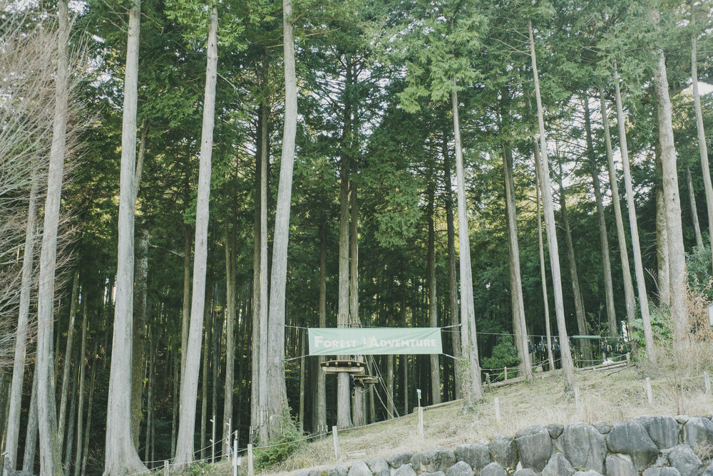 Forest adventure_0120.JPG