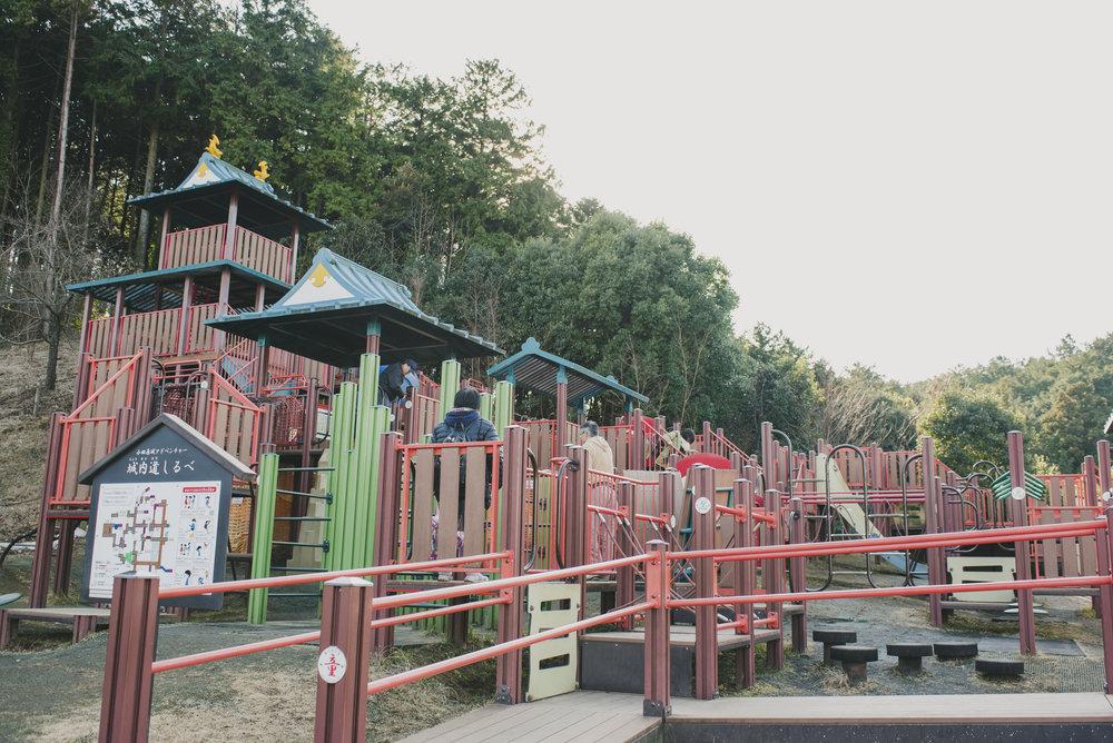 Forest adventure_0125.JPG