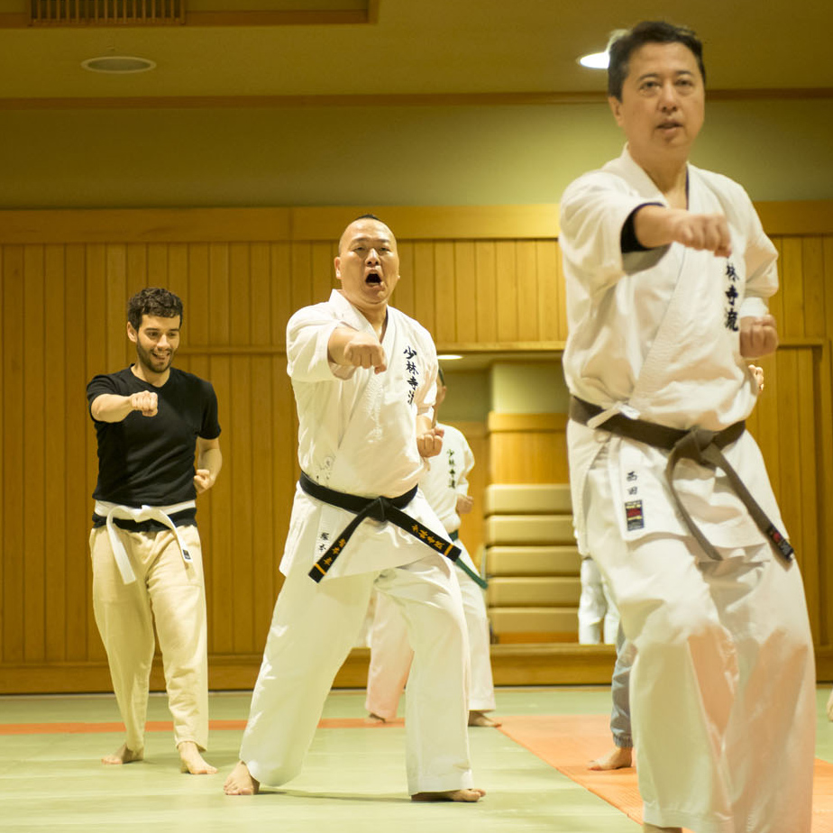tokyo_karate_shorinjiryu_071_sq.jpg