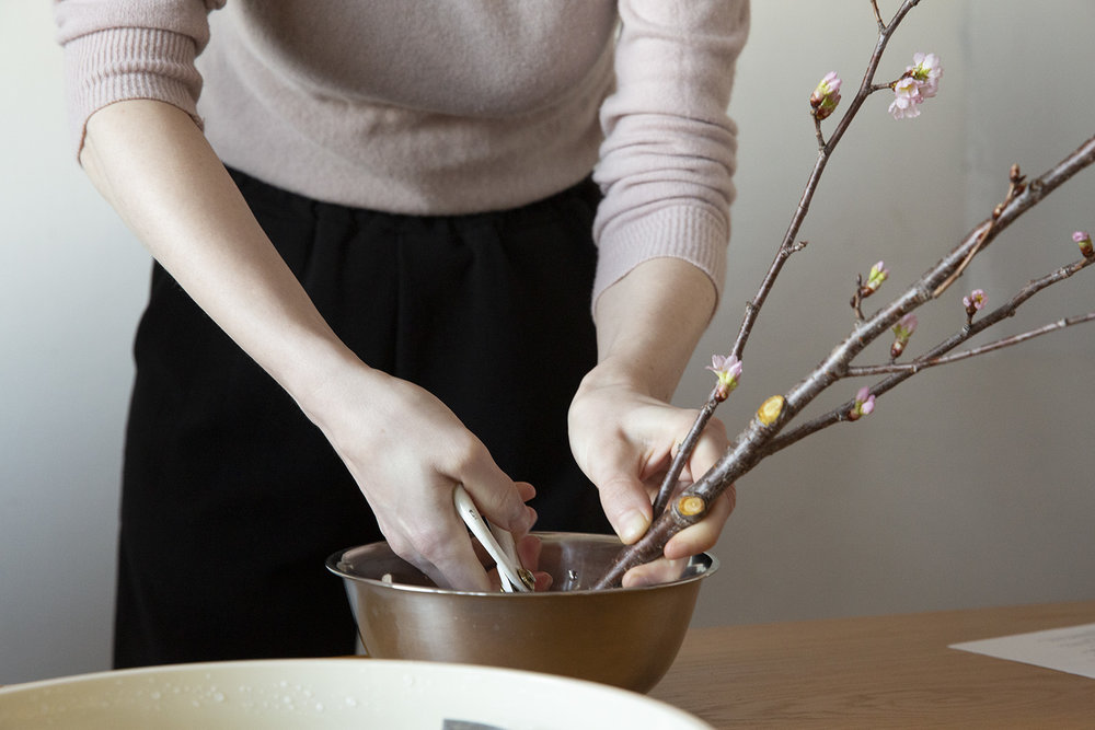 detouur_sakura_cherry_blossoms_ikebana_3.jpg
