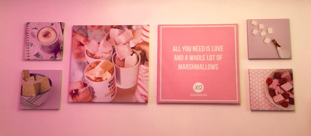 XO Marshmallow women owned business chicago
