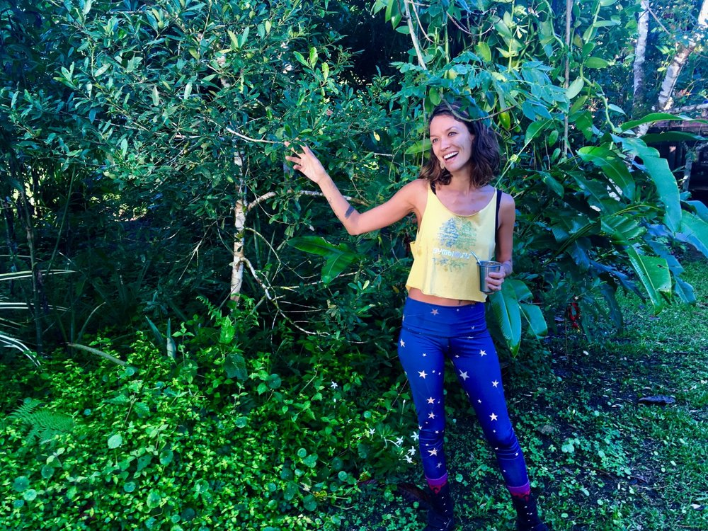 Sarah Wu in the field, Facilitator of Permaculture for the Herbalist's Path, an integrated Permaculture Design Certification and Herbal Studies course this September 23 - October 18 2019 with Atitlan Organics and the Bambu Guest House at Lake Atitlan, Guatemala.